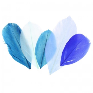 Feathers assortment camaieu bleu x10gr