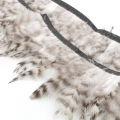 Feathers Ribbon for customization and DIY creation - 8-12 cm - Black/White x1m