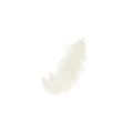 Feathers 8 to 12 cm White x3gr