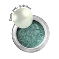 Metal effect powder - Emerald x 6g