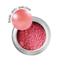 Metal effect powder - Coral x 6g