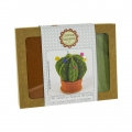 Creative kit in wool felt - Cactus Pin cushion x1