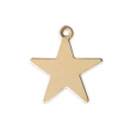 Star charm 15x14 mm - 14Kt Gold-filled x1