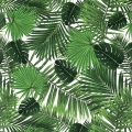 Cotton fabric - Tropical - Monstera and Palm leaves - White/Green x10cm