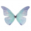 Butterfly without hole 50x35 mm Blue/ Violet x1