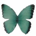 Butterfly without hole 50x35 mm Green/Black x1