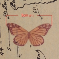 Butterfly without hole 50x25 mm Orange/Brown x1