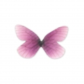 Butterfly without hole 30x21 mm Violet/Fuchsia x1