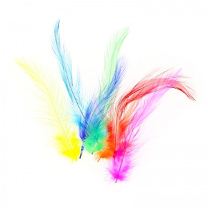 Assortment of rooster feathers collar 3 to 15 cm Multicolor x5g