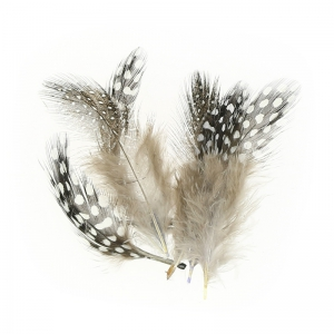 Assortment of guinea fowl feathers 5 cm Natural x10g