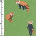Fabric oxford Lesser Panda - green/Terracotta x10cm