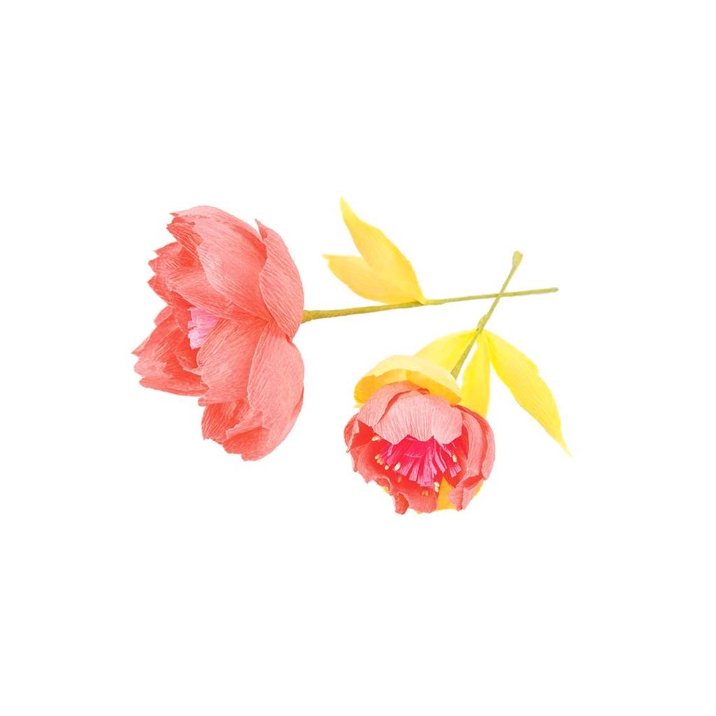 Set of 100 Flower pips schwarz Paper Poetry Perles & Co