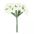 Bouquets of 12 flowers on a metal wire  White / Cream