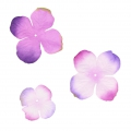 Set of 40 flowers in fabric hydrangea purple