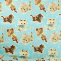 50's Vintage Wrap Fabric - Kitty Turquoise x10cm