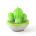 Latex mold for candles creation 80x80 mm Cactus x1