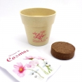 Gift - Eco-friendly flower planting kit cosmos Perles & Co