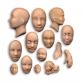 Silicone mold for polymer clay/clay Faces/Hand