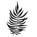 Wooden stamp Tropical Style 4,5 x 7 cm  Fern Leaf x1