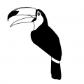 Wooden stamp Tropical Style 5 x 7 cm Toucan x1