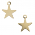 Gold filled stars charms  14K 10 mm x2