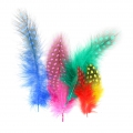 Assortment of guinea fowl feathers 4-6 cm Multicolor x1g