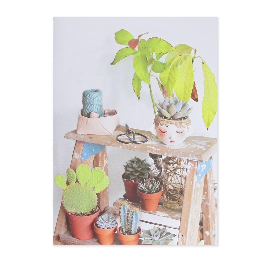Mini jardin de cactus modeler 10 cr ations mode et for Deco jardin miniature